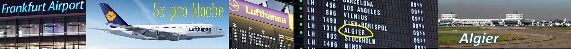 Lufthansa breit oben 1