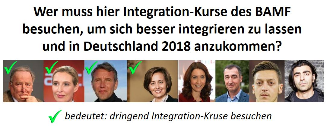 AfD BAMF Integration